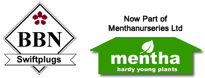 Mentha Nurseries Ltd.